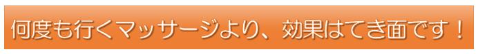 向井さんタイトル