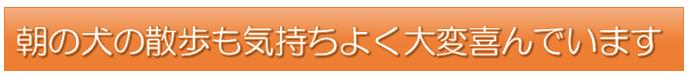 斉藤さんタイトル